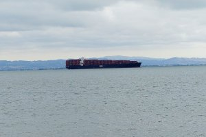 ZIM Piraeus lurks menacingly in San Francisco Bay, 20 Aug. (Image: Steve Rhodes via Twitter)