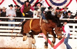 Bucking in the need of prayer.  (Image: Fort Worth Stock Show and Rodeo)